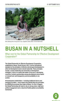 Busan in a Nutshell: What next for the Global Partnership for Effective Development Cooperation?
