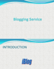 Blogging and website Business Plan