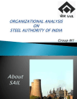 Organizational Analysis on SAIL