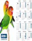 Calendário 2014 Agapornis