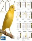 Calendário 2014 Canário