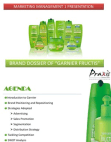PRESENTATION ON GARNIER FRUCTIS