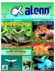 Alcon News 3 - Novembro 2001