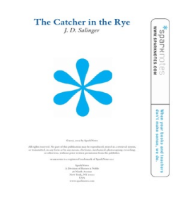 A look at the character of holden caufield in catcher in the rye